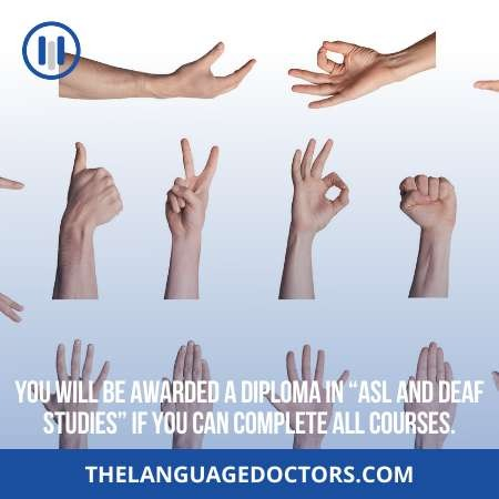 What is ASL and Deaf Studies program-it will help you to understand the work load